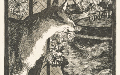 Le Chat et les Fleurs